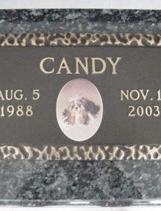 bronze pet memorial on granite custom
