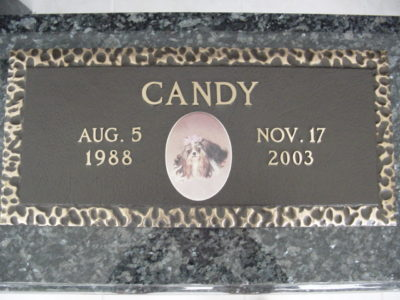 bronze pet memorial on granite custom