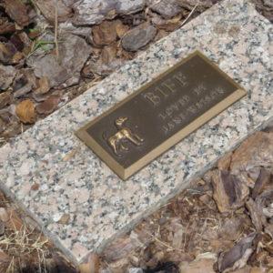 bronze on granite Pet