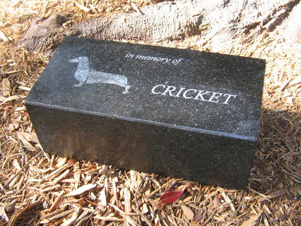 Custom Pet Memorials Create Plaques Stones Keepsakes Local